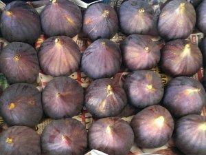 Ege meyve sebzeleri Almanya'da zirvede