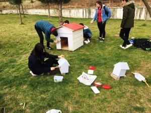 """Öğrencilerden """"Doğa ve Hayvan Sevgisi"""" projesi"""