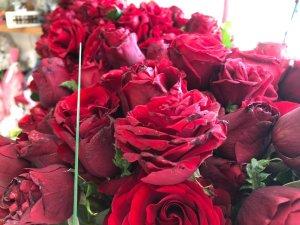 Çiçekçilerin 14 Şubat'tan beklentisi büyük