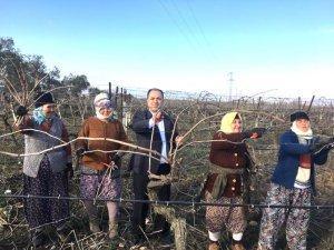 Bağımsız aday Gökçe'den 'Sözleşmeli üretim' projesi