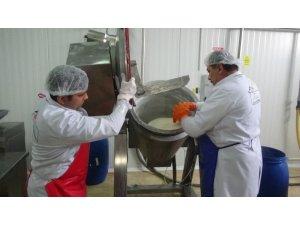 Devlet desteğiyle süt ürünleri tesisi kurdu