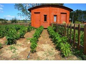 Hobi Bahçeleri yeni sahiplerini arıyor