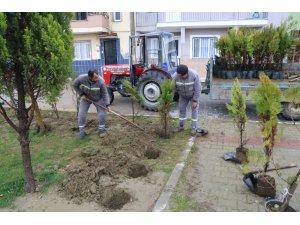 Turgutlu'da Atatürk Mahallesi de yeşilleniyor