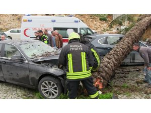 Otomobilin devirdiği ağaç başka bir otomobili hurdaya çevirdi