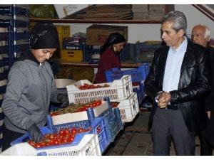 Başkan Adayı Dülgeroğlu, esnaf turunda