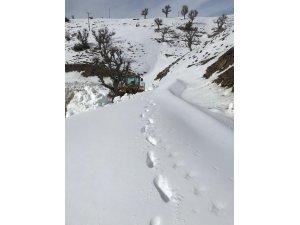 Sason'da kar yağışı nedeni ile 25 köy yolu ulaşıma kapandı