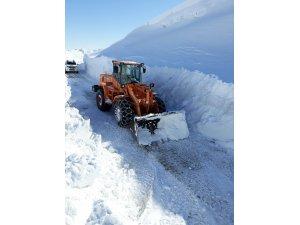 Sason'da kar yağışı nedeni ile kapanan grup köy yolları ulaşıma açıldı