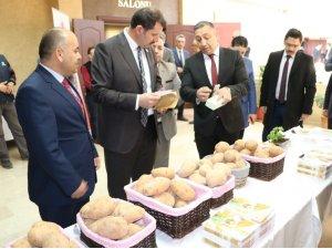 Sivas'ta patatesin üretimi ve sorunları anlatıldı