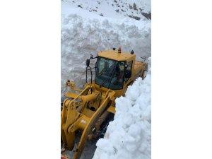 Kar kalınlığının 8 metreyi bulduğu yolda karla mücadele çalışması