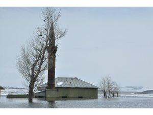 Baraj Gölü doldu köy camisi sular altında kaldı