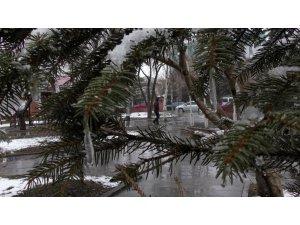 Ardahan'da Nisan'da kar sürprizi