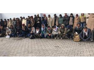 Başkale'de 132 kaçak göçmen yakalandı