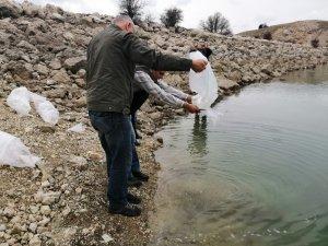 Antalya'da 3 gölete 50 bin yavru sazan balığı bırakıldı