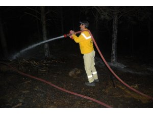 Tekirdağ'da ormanda yangın