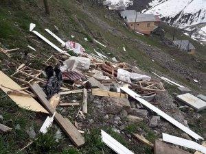Rize'de yiyecek bulamayan ayılar köy evlerine zarar verdi