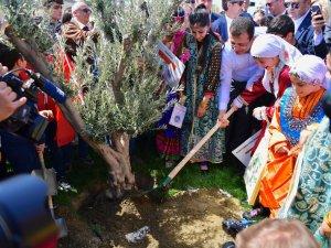 İmamoğlu dünya çocuklarıyla zeytin ağacı dikti