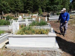 Mezarlıklarda bayram temizliği ve ilaçlama çalışmaları