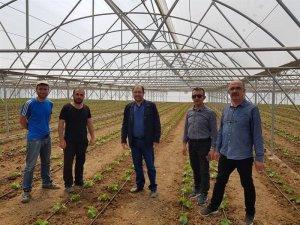 Seracılık Erzincan'da büyüyor