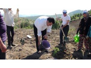 Başkan Ersoy'dan Dünya Çiftçiler Günü mesajı