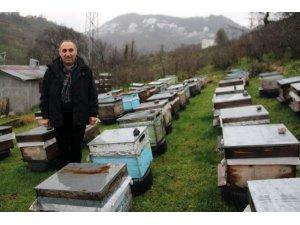 Giresun Arıcılar Birliği Başkanı Elevli, gezgin arıcıları uyardı