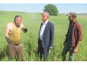 Çiftçiler Günü'nü tarlada çalışarak kutladılar