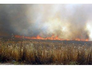 Diyarbakırlı çiftçilere, anız yangınıyla ilgili uyarı bildirisi