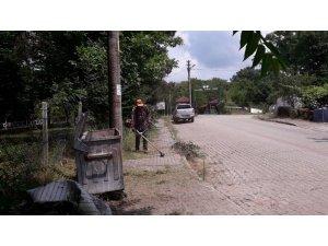 Yabani ot temizliği Balamba Caddesi'nde devam etti