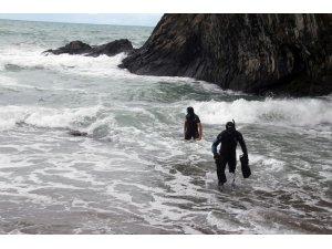 Kayıp öğretmenin köpeği sahilde sahibini bekliyor