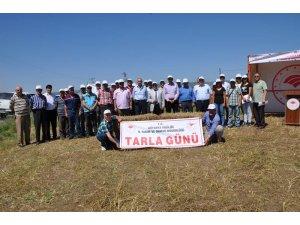 Müdür Vekili Mustafa Kurt: Kütahya'da 50 bin hektar nadas alanı var