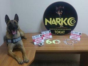Tokat'ta uyuşturucu operasyonu: 2 tutuklama