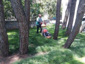 Yeşil alanlarda bakım ve temizlik çalışması