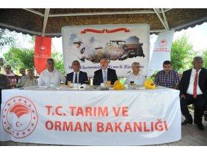 Osmaniye'de 86 üreticiye, Akdeniz Meyve Sineği Tuzağı dağıtıldı