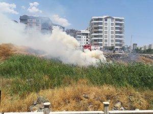 Şanlıurfa'da anız yangını