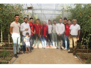 Silopi'de tarım işçilerine ilk yardım eğitimi