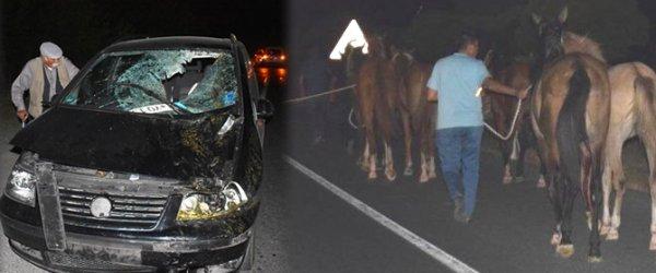 Yarış atları kaçtı... Trafiği birbirine kattılar!