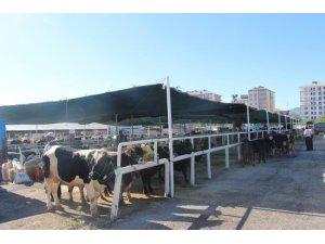 Seydişehir Belediyesi Kurban Bayramına hazır