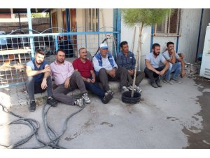 HDP'li Silopi Belediyesinin işten çıkardığı işçilerden eylem