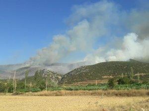 Afyonkarahisar'ın Başmakçı ilçesinde çıkan orman yangını sabaha karşı kontral altına alındı