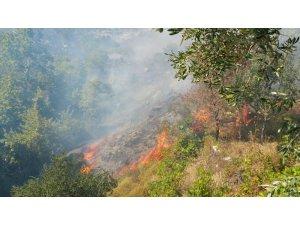 Marmara Adası'nda kontrol altına alınan yangın tekrar başladı