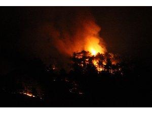 Eskişehir'deki orman yangınını söndürme çalışmaları devam ediyor