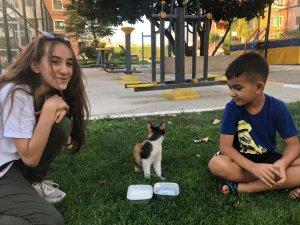 Minik yüreklerden sıcaktan bunalan yavru kediye can suyu