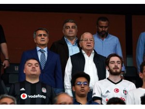 Şenol Güneş, Beşiktaş Park'ta