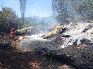 Saman yüklü tır yandı, alevler ormana sıçradı
