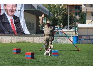 30 Ağustos Zafer Bayramı gösterilerine eğitimli köpeklerin gösterisi damga vurdu