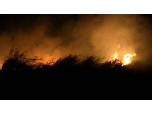 Hatay'da sazlık alanda yangın