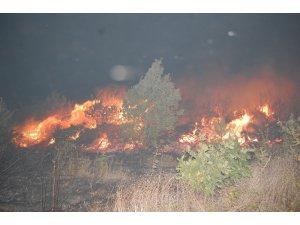 Tekirdağ'da korkutan yangın: Yüzlerce çam alev alev yandı