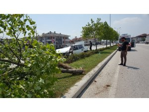 Refüje çıkan otomobil ağaca çarptı: 1 çocuk yaralı