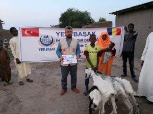 """Yedi Başak İnsani Yardım Derneği'nden Afrika'da """"Süt Keçisi Projesi"""""""