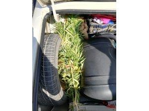 Aracın bagajında kubar esrar ele geçirildi