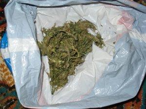 Şüpheli şahıslardan uyuşturucu çıktı: 5 gözaltı